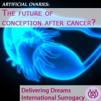 "Can ""Artificial Ovaries"" help women conceive after chemotherapy?"