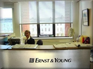 Financial Support for Surrogacy: Ernst & Young