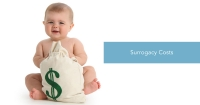 How Much Does Surrogacy Cost in the US? Time to Consider Ukrainian Surrogacy!