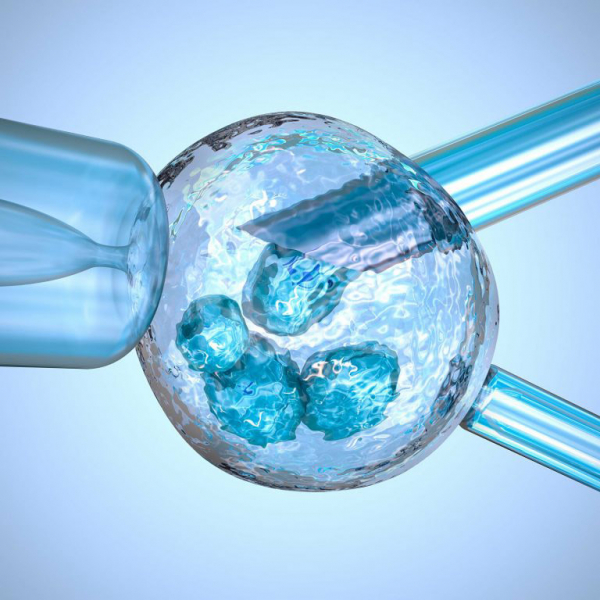 Great Packages for IVF and Gender Selection in Ukraine