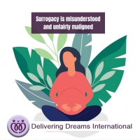 Surrogacy is misunderstood and unfairly maligned -we need to change the narrative