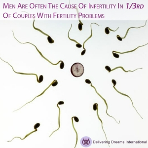 Research Uncovers New Reason For Male Infertility