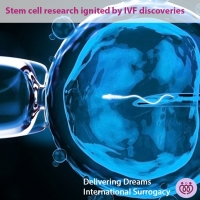IVF Paved The Way For Stem Cell Research